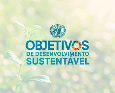 ONU e Izabela Hendrix estabelecem convênio inédito pela promoção dos Objetivos de Desenvolvimento Sustentável