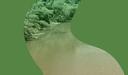 Curso de Ciências Biológicas e SOS Mata Atlântica realizam evento Observando os Rios em BH