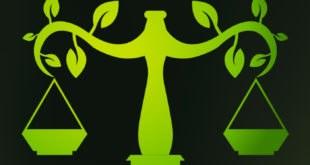 Docente participa de fundação de associação nacional de Direito Ambiental