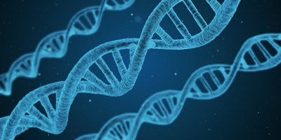 Izabela Hendrix promove palestra sobre variância genética