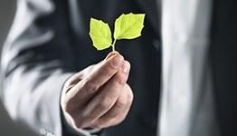 Gestão Ambiental Empresarial e Educação para Sustentabilidade