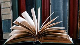Fenomenologia - Fundamentos e aspectos críticos